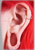 Ear Stretcher Repair